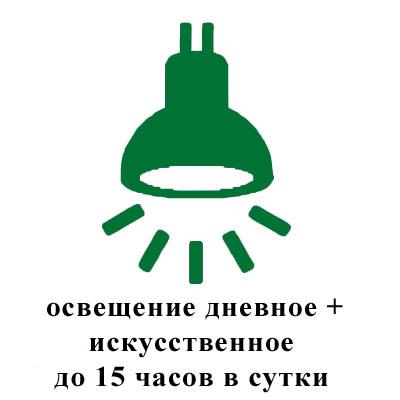 освещение дневное+искусственное до 15 часов в сутки.jpg