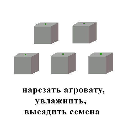 агровата 1этап.jpg